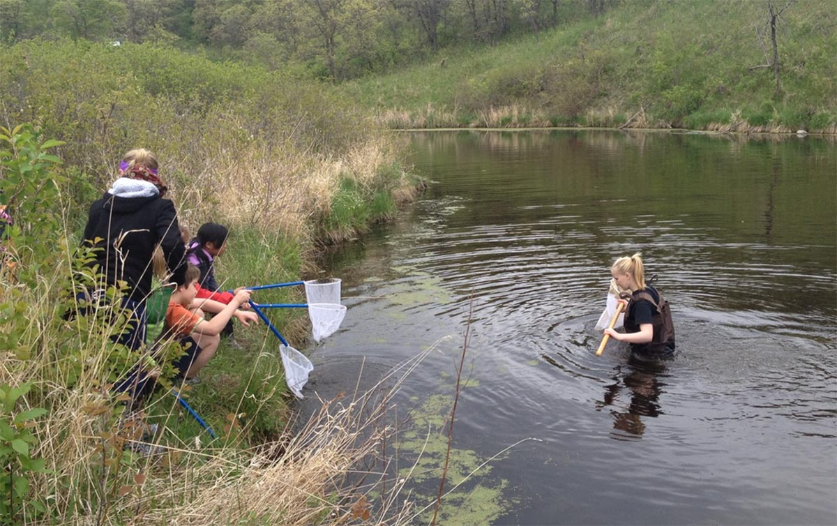 Students critter dipping in marsh