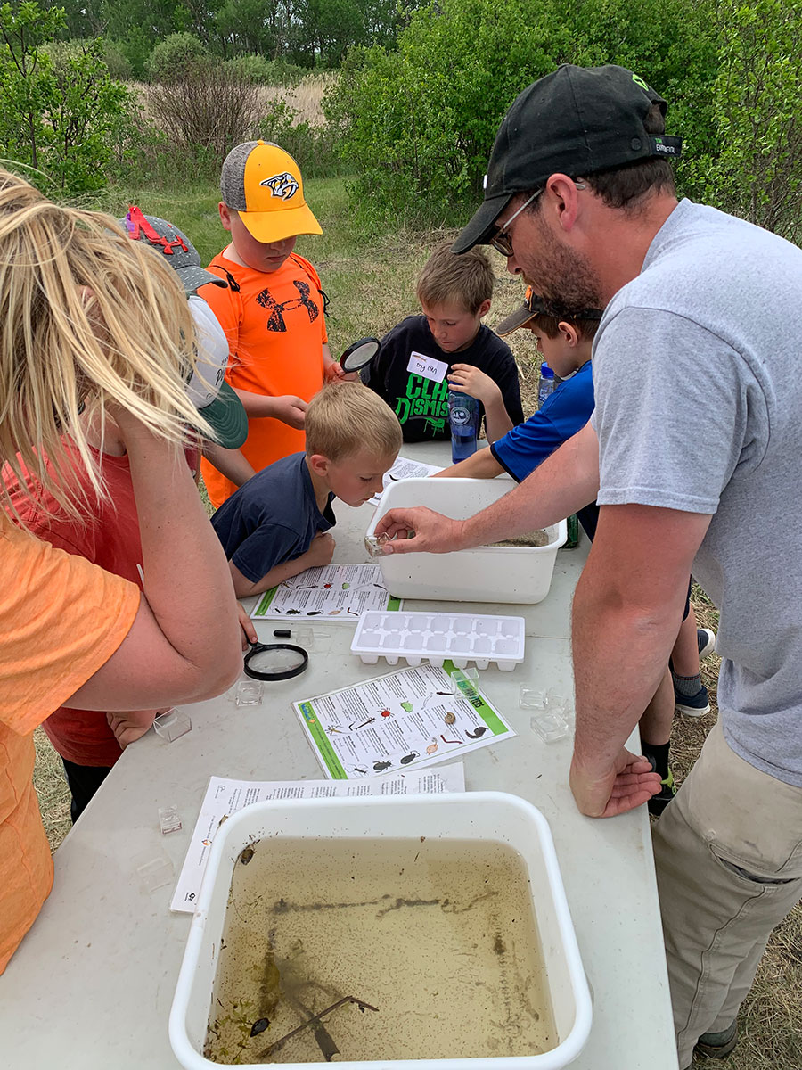 students learning about wetland bugs