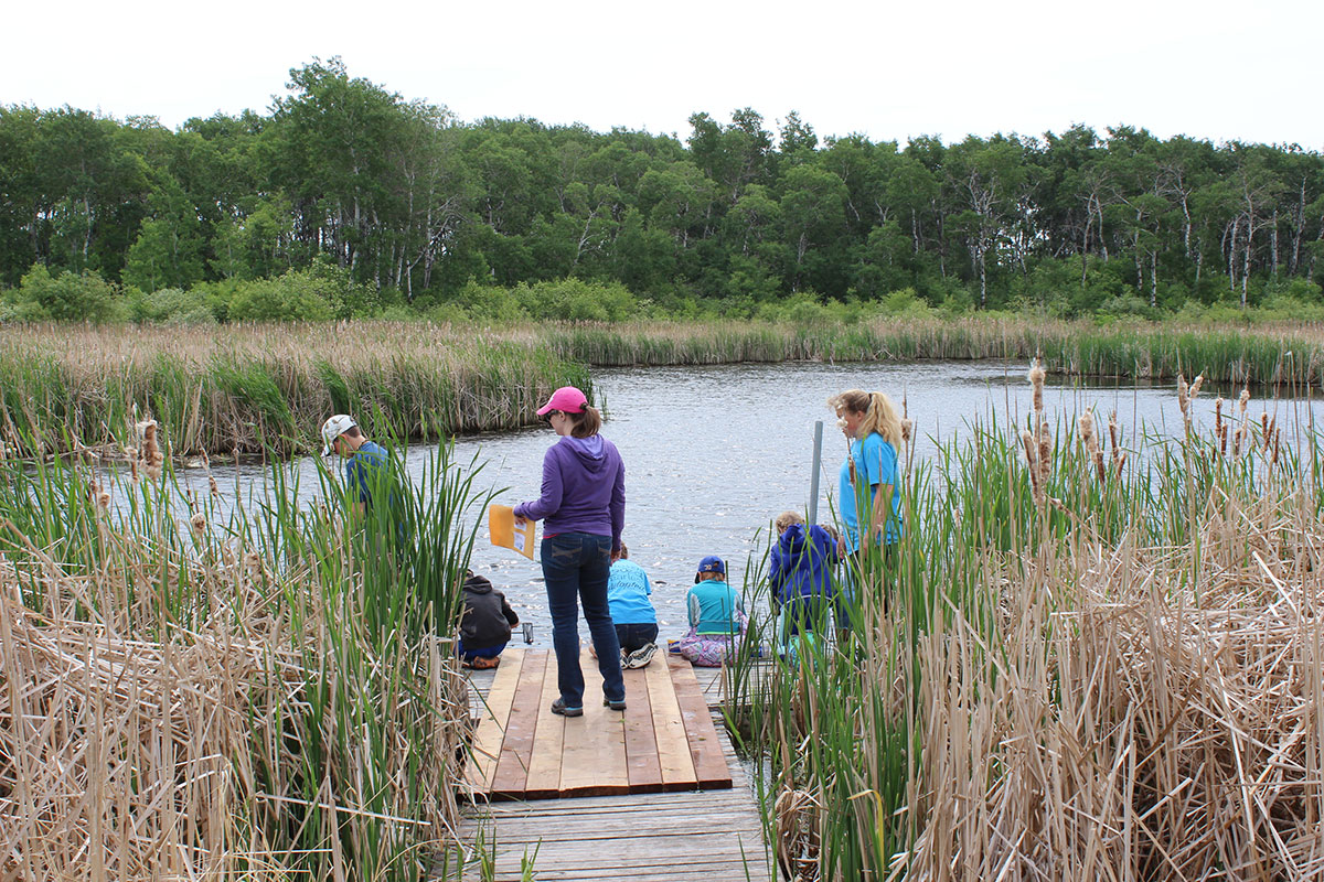 Students in a wetland