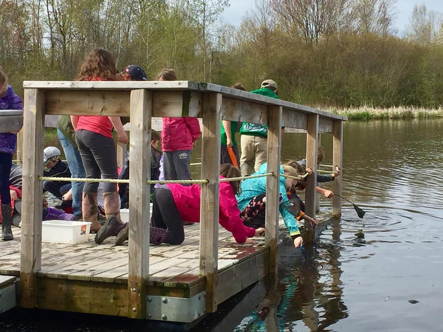 Students crittering dipping on a dock